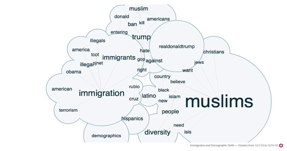 Crimson Hexagon word cloud on immigration