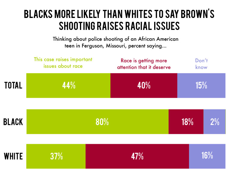 "Colorful graph showing the percentages by demographic who think the following about Brown's shooting case: ""this case raises important issues about race,"" ""race is getting more attention that it deserve"" or ""don't know."""